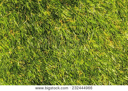 Texture Photo Artificial, Green Grass, Background Image