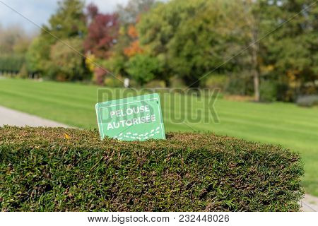 Signin French Lawn Allowed, In A Park