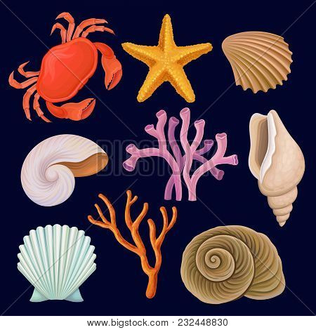 Underwater Sea Creatures Set, Crab, Starfich, Seashell, Coral Vector Illustrations Isolated On A Dar