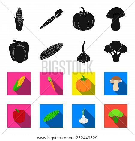 Red Sweet Pepper, Green Cucumber, Garlic, Cabbage. Vegetables Set Collection Icons In Black, Flet St