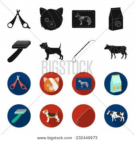 Dog, Cow, Cattle, Pet .vet Clinic Set Collection Icons In Black, Flet Style Vector Symbol Stock Illu