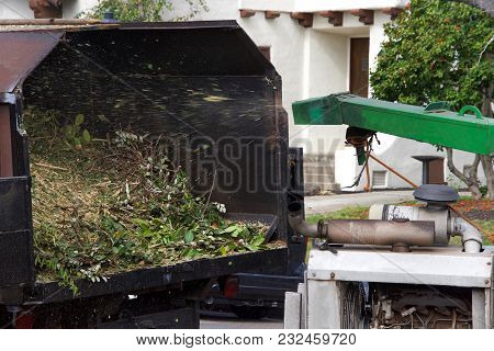Wood Chipper Blowing Tree Branches Cut Up Into The Back Of A Truck. A Tree Chipper Or Wood Chipper I