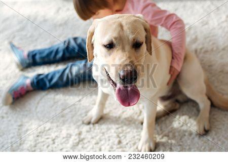 Preadolescent Girl With Down Syndrome Hugging Labrador Retriever Dog