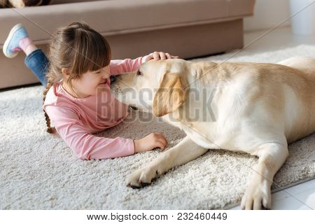 Kid With Down Syndrome And Labrador Retriever Touching Noses