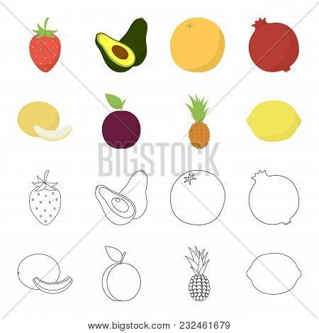 Melon, Plum, Pineapple, Lemon.fruits Set Collection Icons In Cartoon, Outline Style Vector Symbol St