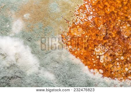 Natural Texture Of Mold On Fruit Macro. Rotten Background