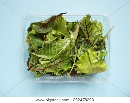 Fresh Spinach Leaves And Green Arugula Salad Rocket, Arugula In Container On Blue Table