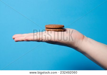 The Girl Is Holding A Brown Biscuit In Her Hand. The Concept Of Sweet Food And Dessert. Place For Te
