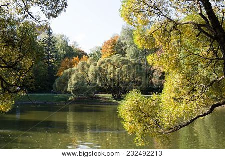 Landscape Of Grass Field In Parkwith Green Tree And Water Pond.