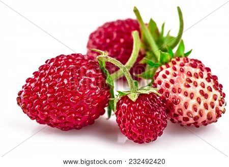 Berry wild strawberry with green leaves handful fresh strawberries healthy food, isolated on white background.