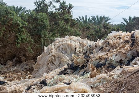 Ecology Disaster And Pollution Of Nature, Plastic Garbage Decomposes Under Hot Sun, Israel