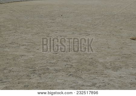 Vast Open Beach Filled With Sand Crab Nests