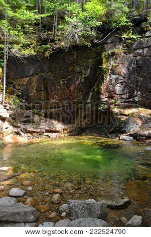A Rock Wall With Trees Above A Small, Green Pond With Rocks And Boulders.