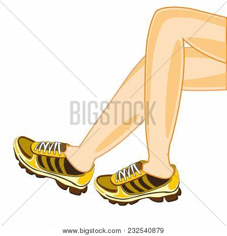 Beautiful Legs In Atheletic Footwear On White Background