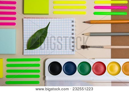 Green Leaf On A Notebook And School Supplies For Primary School