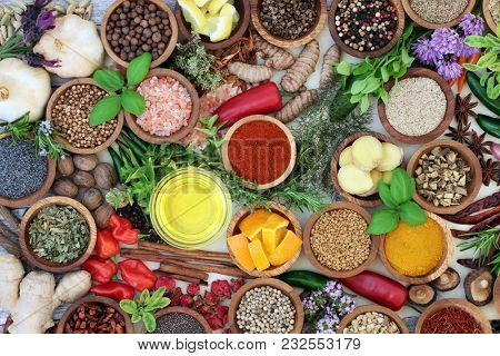 Herb and spice seasoning abstract background with fresh and dried herbs and spices and olive oil. Top view.