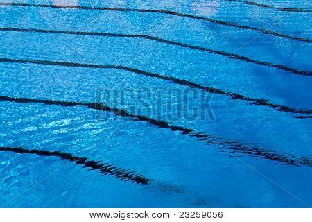 Lane Lines Swimming Image & Photo (Free Trial) | Bigstock