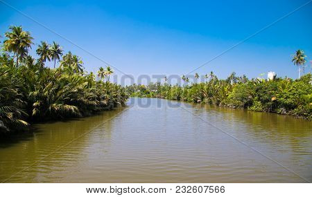 Tropical river flows through mangrove trees in northern Palawan, Philippines.