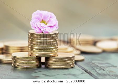 Money Savings In Spring - Gold Coins And Pink Flower