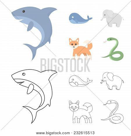 Whale, Elephant, Snake, Fox.animal Set Collection Icons In Cartoon, Outline Style Vector Symbol Stoc