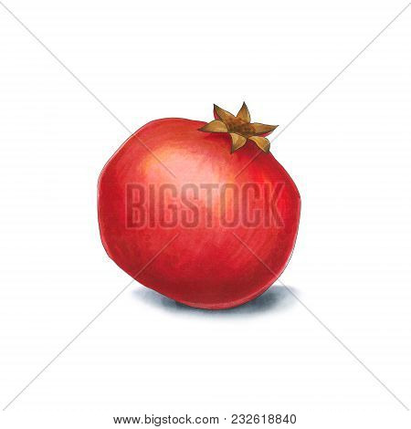 Pomegranate On A White Background. Sketch Done In Alcohol Markets. You Can Use For Greeting Cards, P