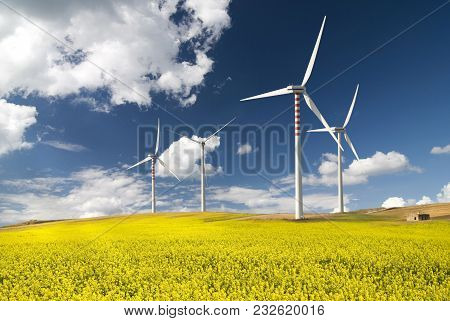 Summer Landscape With Blue Sky, Yellow Expanse With Rapeseed Flowers And The Background Wind Turbine