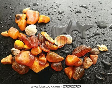 A Piece Of Natural Amber Of Different Fractions On A Dark Background With Raindrops.