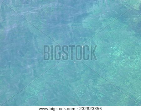 Soft Focus Clear Aqua Blue Mediterranean Sea With Shallow Bottom And Three Fish Background