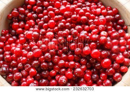 Close-up Macro Of Red Berries In A Big Pile