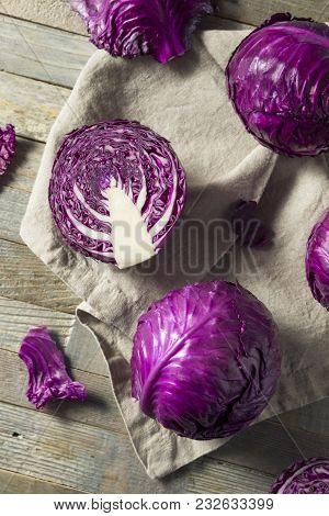 Raw Organic Purple Cabbage