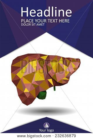 Realistic Human Liver Cancer With Bile Duct And Gallbladder In Low Poly.  Cirrhosis Liver. Good For