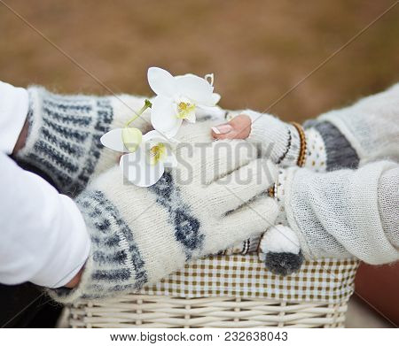 Two Hold Each Other By The Hands, In One Of The Hands Is An Orchid. Below The Basket. Hands Are Dres