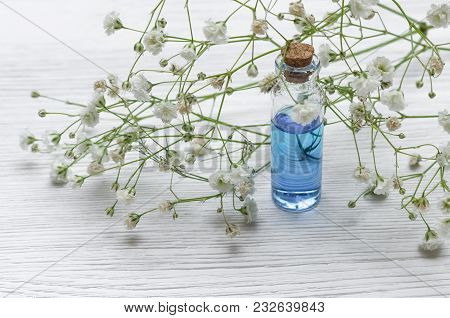 Blue Essence Healing Tincture On White Wooden Table Background. Herbal Medicine Concept. Alternative