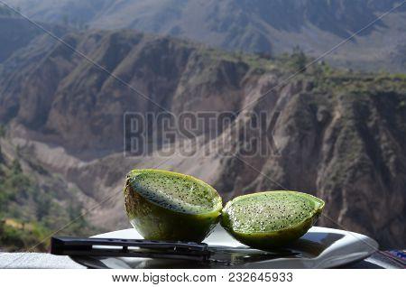 Peruvian Green Cactus Pear, Colca Canyon, Peru