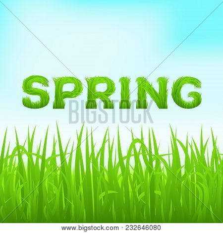 Spring Inscription Made Of Grass. Spring Background With Green Early Spring Grass On Blurred Soft Ba
