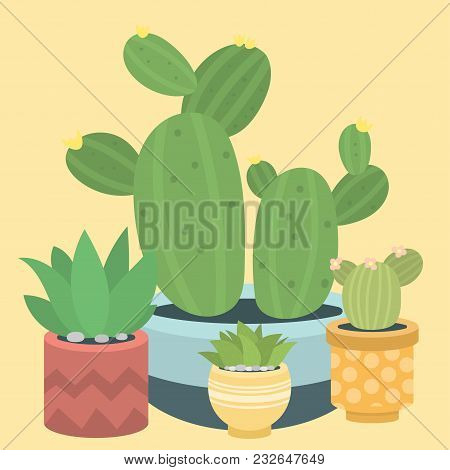 Cactus Green Plant Cactaceous Home Nature Cacti Vector Illustration Of Tree With Flower. Cute Cartoo