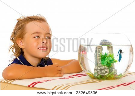 A Small Tanned Girl Looks At A Colorful Fish Floating In An Aquarium. The Concept Of Flora And Fauna