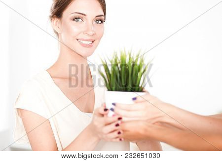 Beautiful woman holding pot with a plant, standing