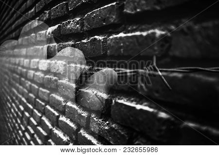 Double Exposure Concept Of Prisoner Hand On The Barbed Wire With A Huge Brick Wall Of Jail Or Prison