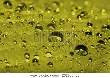 Morning Dew On A Close-up Sheet. Macro. Toning In Pantone Color Golden Lime.