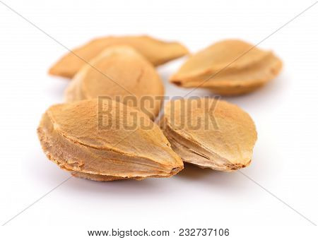 A Heap Of Apricot Kernel Isolated On White Background.