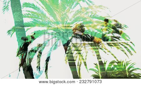 Double Exposure Image Of Tropic Palms And Old Man Sitting, Memories Of Youth, Stock Footage