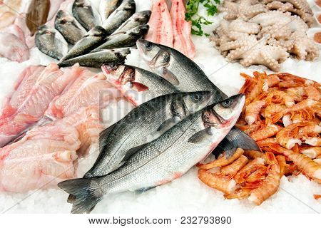 Different Kinds Of Fish On Market Display