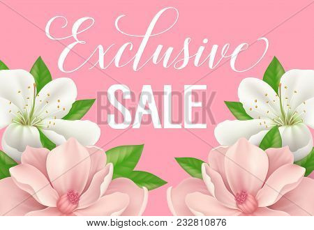 Exclusive Sale Poster Design With Blossoms On Pink Background. Calligraphic Inscription Can Be Used