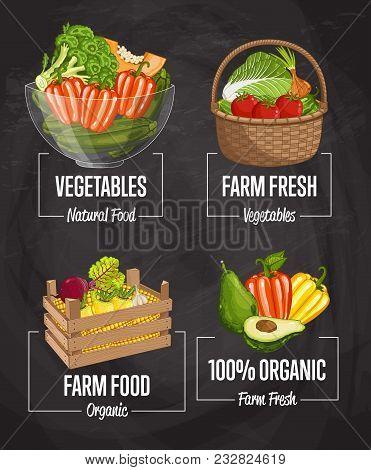 Organic Farm Harvest Set Illustration. Fresh Natural Vegetable, Organic Farming, Vegan Food Store, R