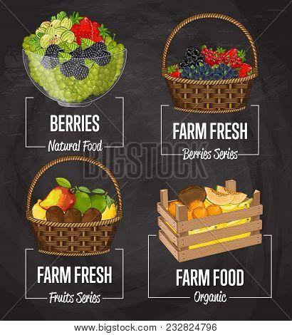Organic Farm Fruit Set Illustration. Natural Fruit, Organic Farming, Vegan Food Store, Retail Farm P