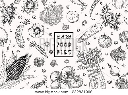 Organic Food Design Template. Fresh Vegetables. Hand Drawn Illustration Frame With Vegetables. Eco O