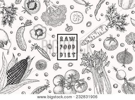 Organic Food Design Template. Fresh Vegetables. Hand Drawn Illustration Frame With Vegetables. Eco O