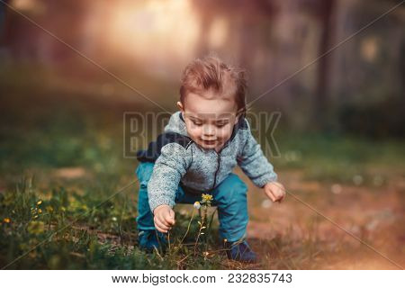 Cute little baby boy collecting wild flowers on the fresh floral field in the park, spending warm spring day in the countryside, enjoying beauty and freshness of nature