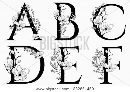 Vector Hand Drawn Floral Uppercase Letters Monograms Or Logo. Uppercase Letters A, B, C, D, E, F Wit